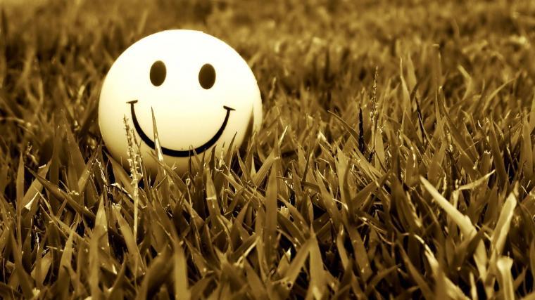 Grass Smiling 2048 1152 Wallpaper 2158365