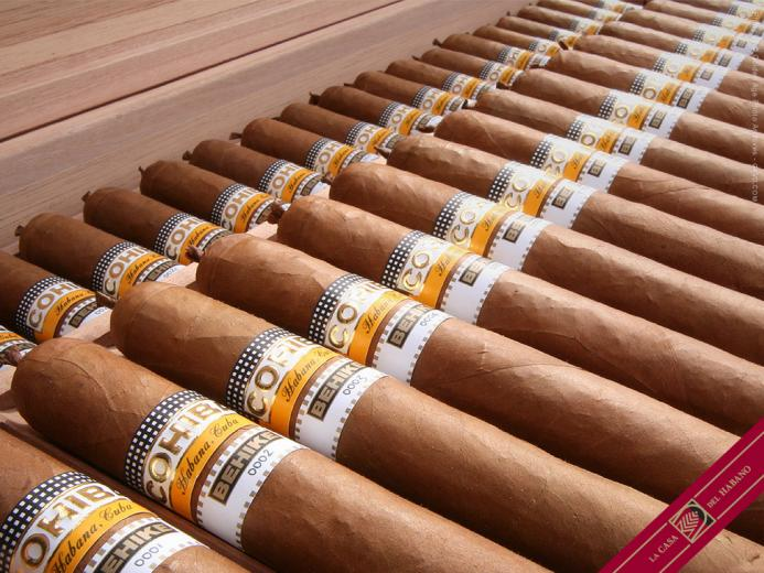 the Havana Cigar a temple devoted to the worlds finest tobacco