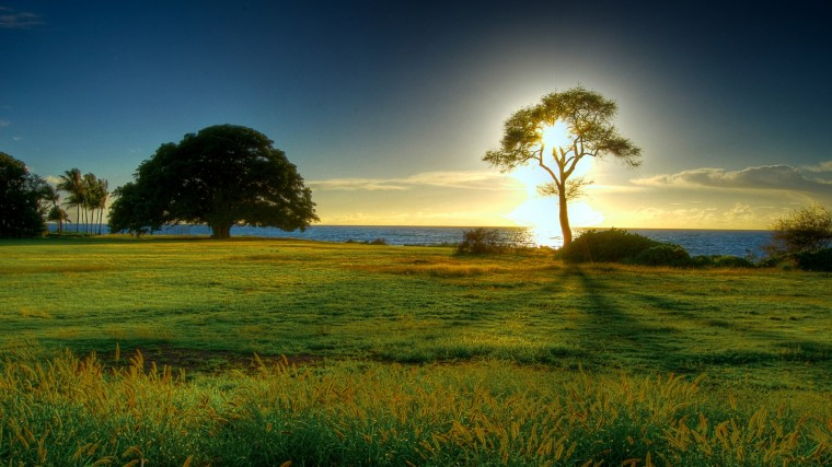 Beautiful Nature Wallpapers for Background HD Wallpaper of Nature