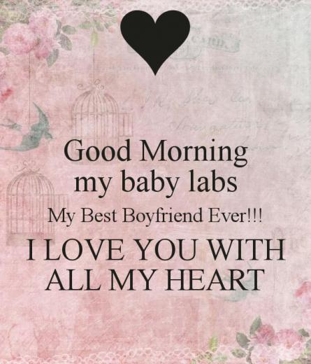 my baby labs My Best Boyfriend Ever I LOVE YOU WITH ALL MY HEART
