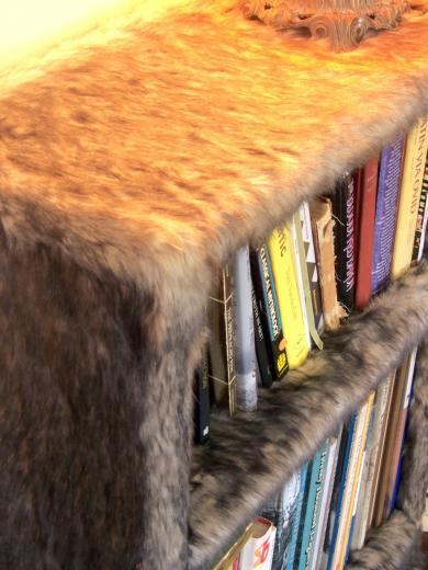 faux fur bookshelf by modern art design 225x300 1 furry faux fur