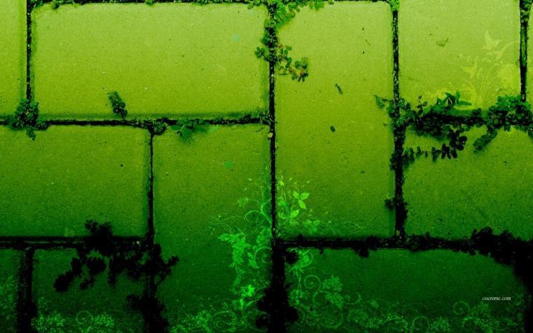 Green Bricks Wallpaper   Green Wallpaper 20988829