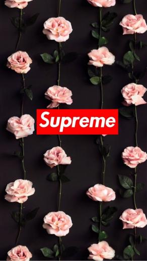 83 Supreme Wallpapers on WallpaperPlay