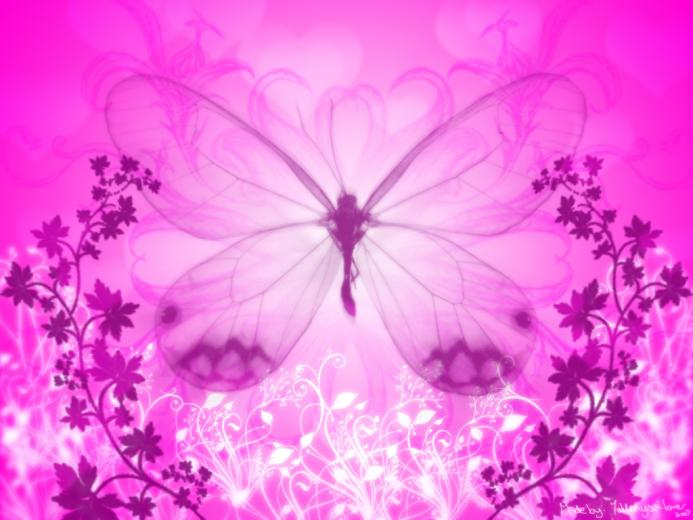 wallpapers baby pink wallpapers pink backgrounds wallpapers