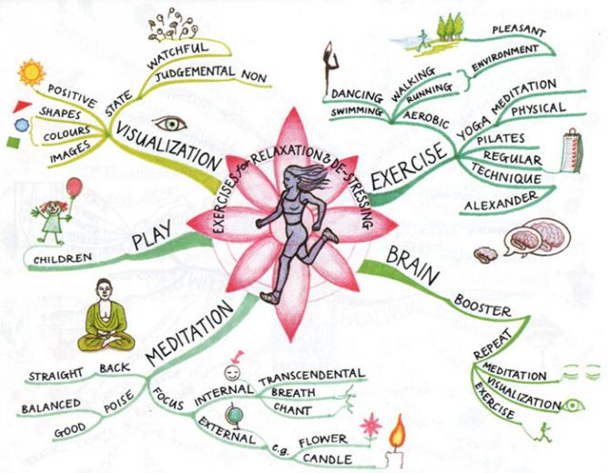 Source Power of Physical Intelligence by Tony Buzan