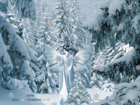 Fairy s Winter Garden Wallpaper 3200x2800   Desaturated Blue Desktop