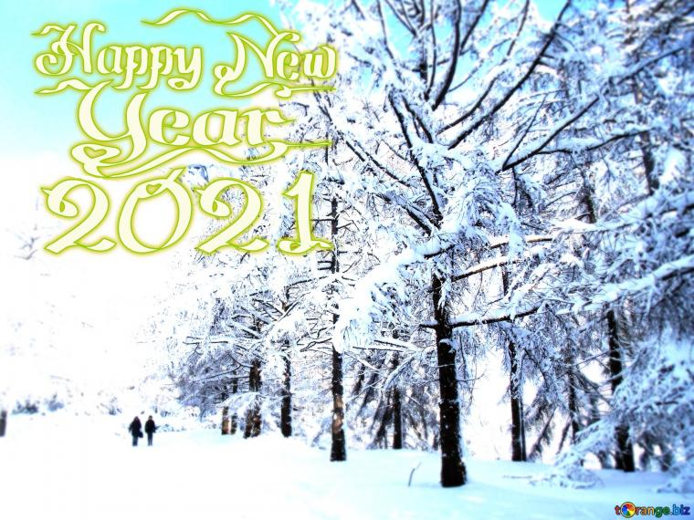 Download picture The Snow Winter forest happy new year 2021
