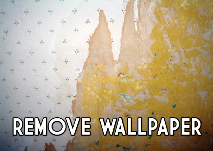 remove wallpaper what is the best solution for wallpaper removal