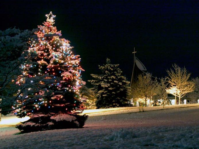 Christmas Tree Desktop Wallpapers   Page 1