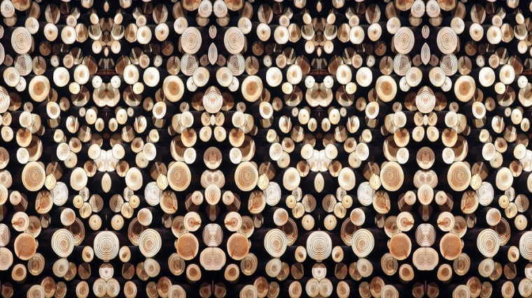 Wooden Wallpaper Stereogram by aegiandyad
