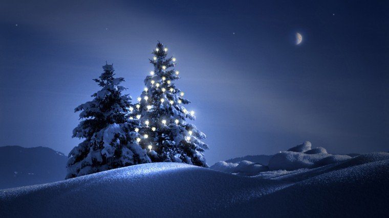 Beautiful Christmas Tree At Night photos Christmas Tree Wallpapers For
