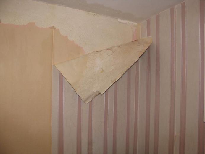 wallpapercomphotosherwin williams temporary wallpaper25html