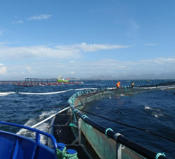 Safe workplaces in aquaculture   SINTEF