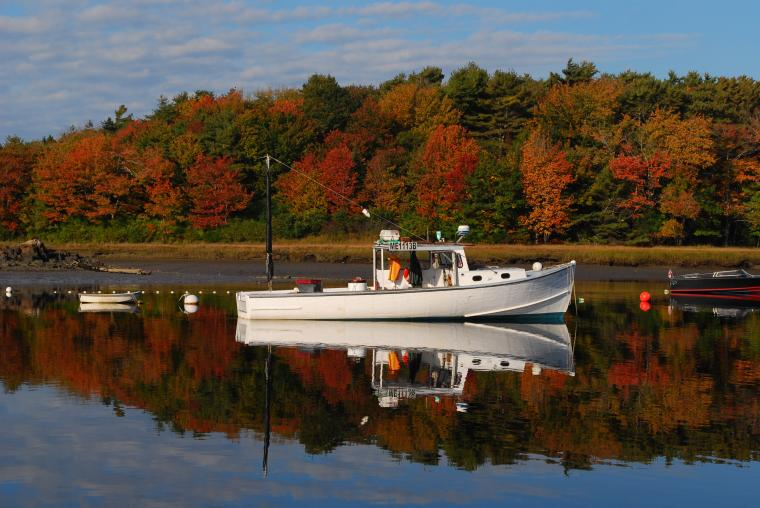 Maine Fall Foliage Wallpaper Photo gallery every few