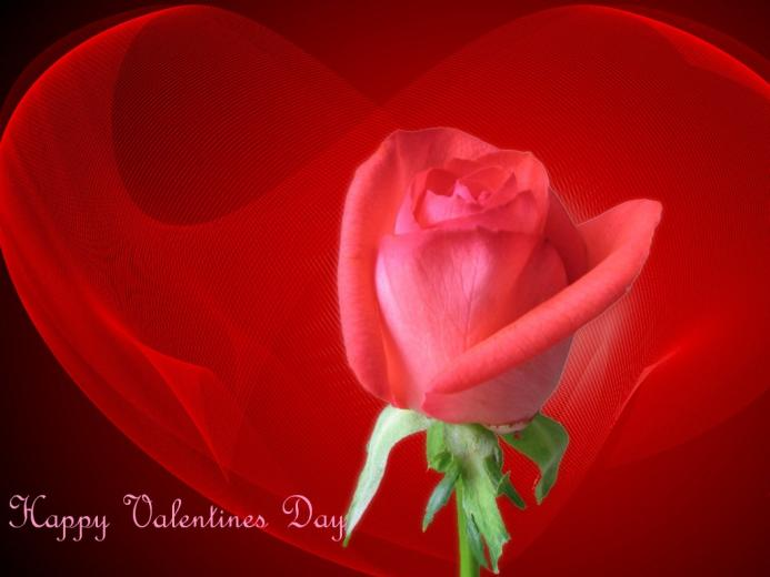 share with friends download download valentine day wallpaper which is