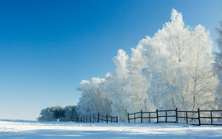 Snow Wallpaper Widescreen 8701 Hd Wallpapers in Nature   Imagescicom