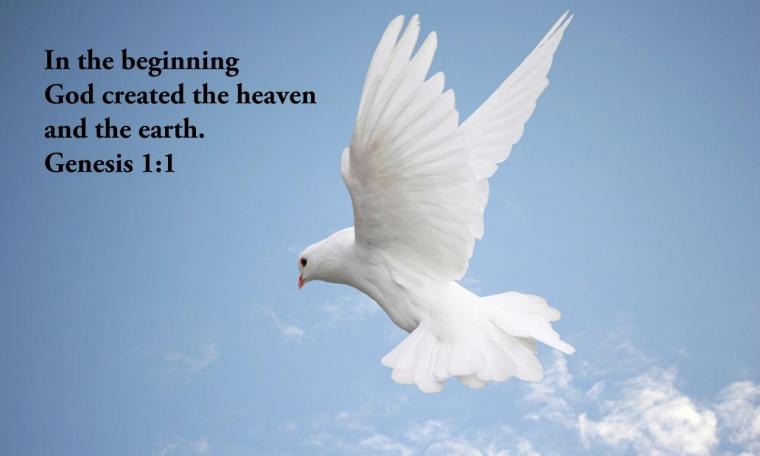 Creation Wallpaper   Christian Wallpapers and Backgrounds