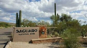 Volunteers Keep Saguaro National Park Clean During Shutdown   AZPM
