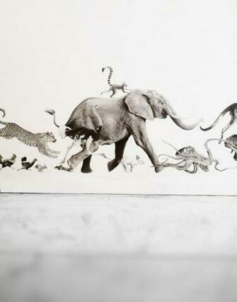 Just Kids Wallpaper Blog Hand Drawn Animal Border