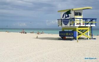 Miami Beach X Wallpaper