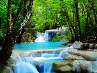 Forest Waterfall wallpaper What We Have Learned From Romney Ryan