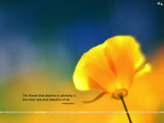 Motivational wallpaper on Beautiful The flower that blooms in
