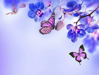 Wallpapers Monarch butterfly Butterflies Orchid Flowers