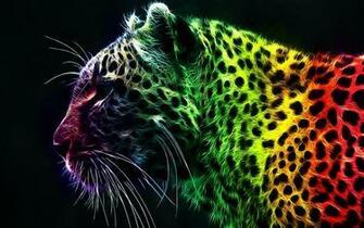 Rainbow   Bright Colors Wallpaper 18591234