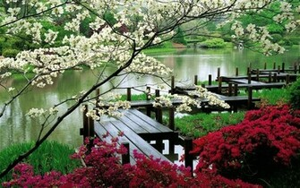 Japanese garden wallpaper   Nature wallpapers   8269