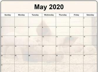 Cute May 2020 Calendar Floral Wall Calendar Design May 2020