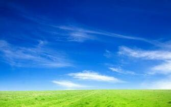 Blue Sky and Green Grass Desktop and mobile wallpaper Wallippo