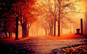 Autumn Nature Wallpapers HD Pictures One HD Wallpaper Pictures