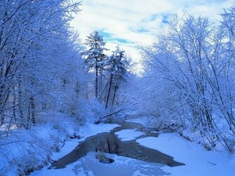 Winter Scene   Christmas Wallpaper 2735689