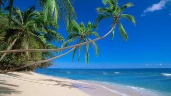 Desktop Backgrounds and Wallpaper   Kadavu Island Fiji   Always