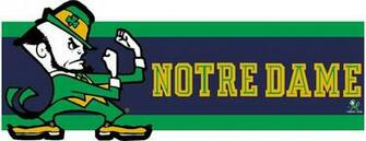 Notre Dame Fighting Irish 7 Tall Die Cut Wallpaper Border