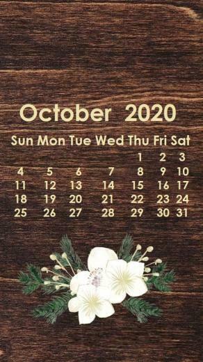 October 2020 iPhone Wallpaper in 2019 Calendar wallpaper
