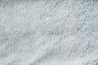 White Fur Background White Fur Background