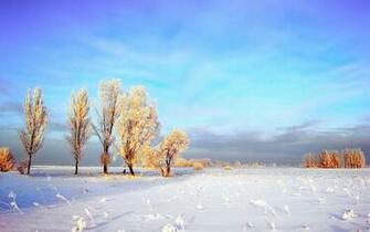 Winter Scenes Wallpaper wallpaper wallpaper hd background