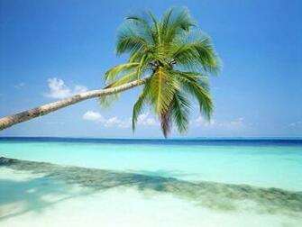 Tag Beach Wallpapers Backgrounds Photos Picturesand Images for