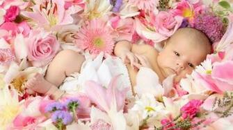 Cute Flower Wallpapers Desktop   ImgHD Browse and Download