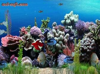 Aquarium Animated Wallpaper Screenshot Desktop Themes Wallpaper