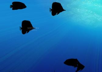 animated aquarium wallpaper Desktop wallpaper wallpaper kostenlos