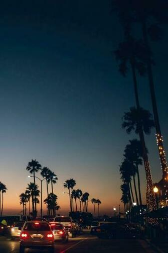 30 Venice Beach Sunset iPhone Wallpapers   Download at WallpaperBro
