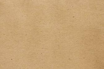 Light Brown or Tan Paper Texture with Flecks Picture Photograph