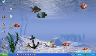 Download image Download Wallpaper Bergerak Ikan Gambar Animasi Burung