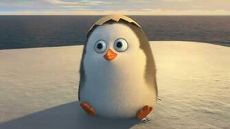 Pics Photos   Cute Penguin Wallpaper