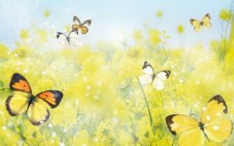 Beautiful Spring   Spring Wallpaper 27865667
