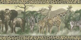 Animal Print Safari Wallpaper Border   Wallpaper Border Wallpaper