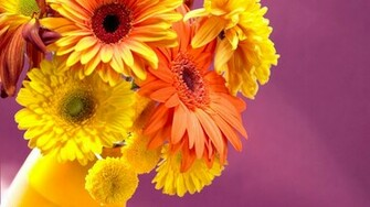 Jaspreet Rekhi 40 Colorful Flowers Wallpapers Full HD 1080prar