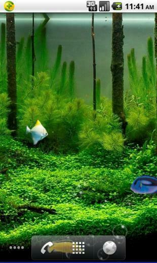 Tags Aquarium live wallpaper mobile theme download Android live